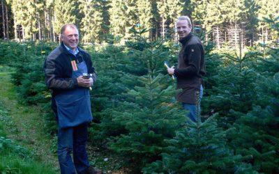 Andreas und Werner Osebold und ihre Weihnachtsbäume aus dem Sauerland - Nadelholzkulturen Osebold